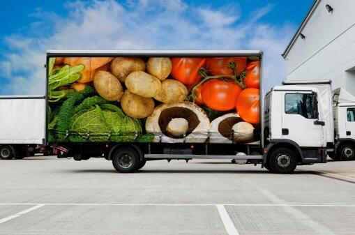 Перевозка особенных грузов. Скоропортящиеся грузы